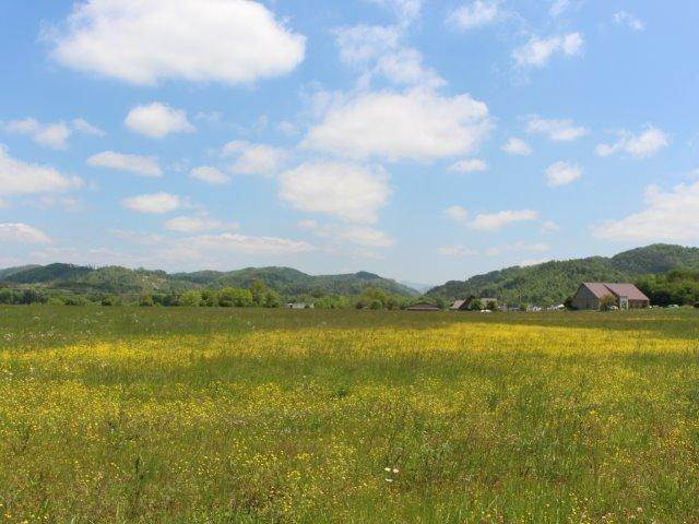 Land for Sale at Bank Street Tellico Plains, Tennessee 37385 United States