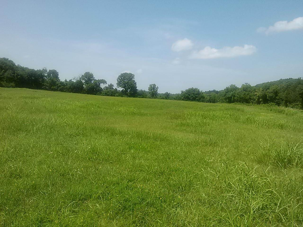 Land for Sale at Polly Adams Road Lewisburg, Tennessee 37091 United States