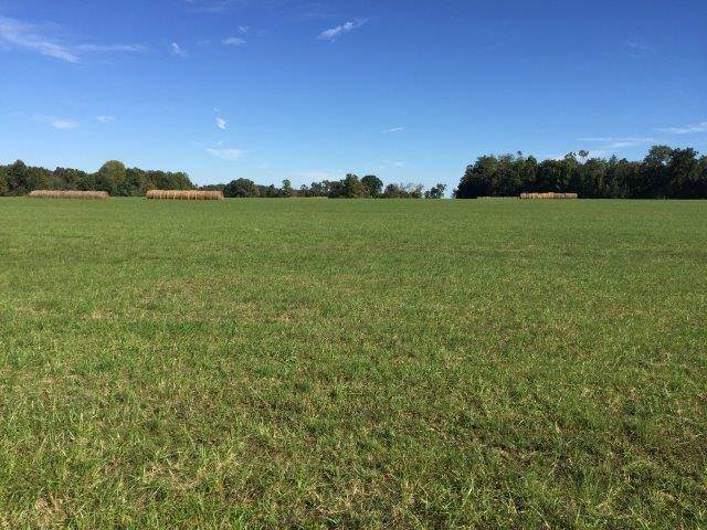 Land for Sale at Address Not Available Cookeville, Tennessee 38506 United States