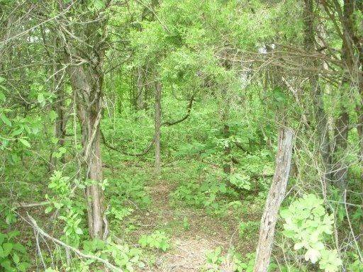 Land for Sale at 918 Mccubbins Road Strawberry Plains, Tennessee 37871 United States