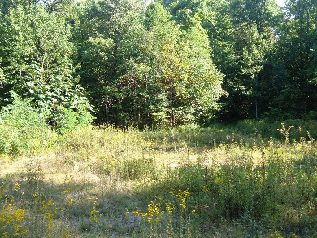 Land for Sale at Low Gap Road Helenwood, Tennessee 37755 United States