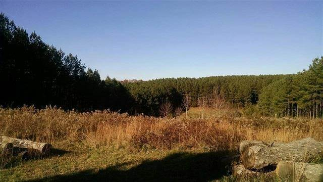 Land for Sale at 31.29 Ac Crabtree Lane Niota, Tennessee 37826 United States