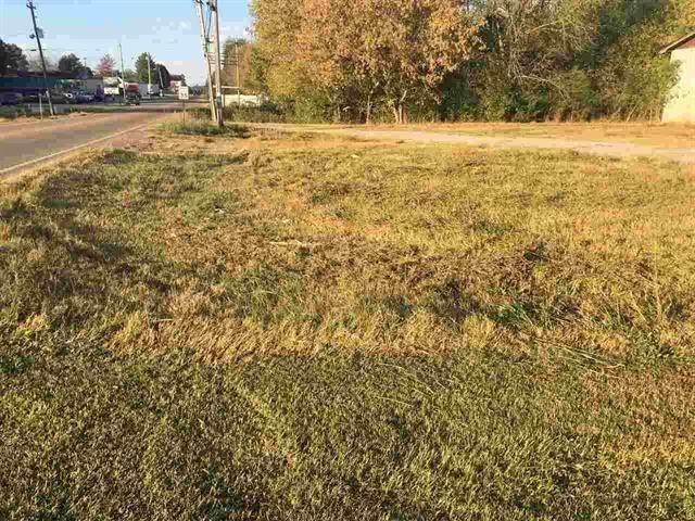 Land for Sale at 720 W Willson Street Niota, Tennessee 37826 United States