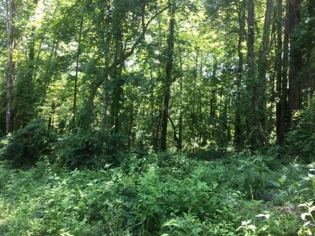 Land for Sale at 8 Laurel Place Norris, Tennessee 37828 United States