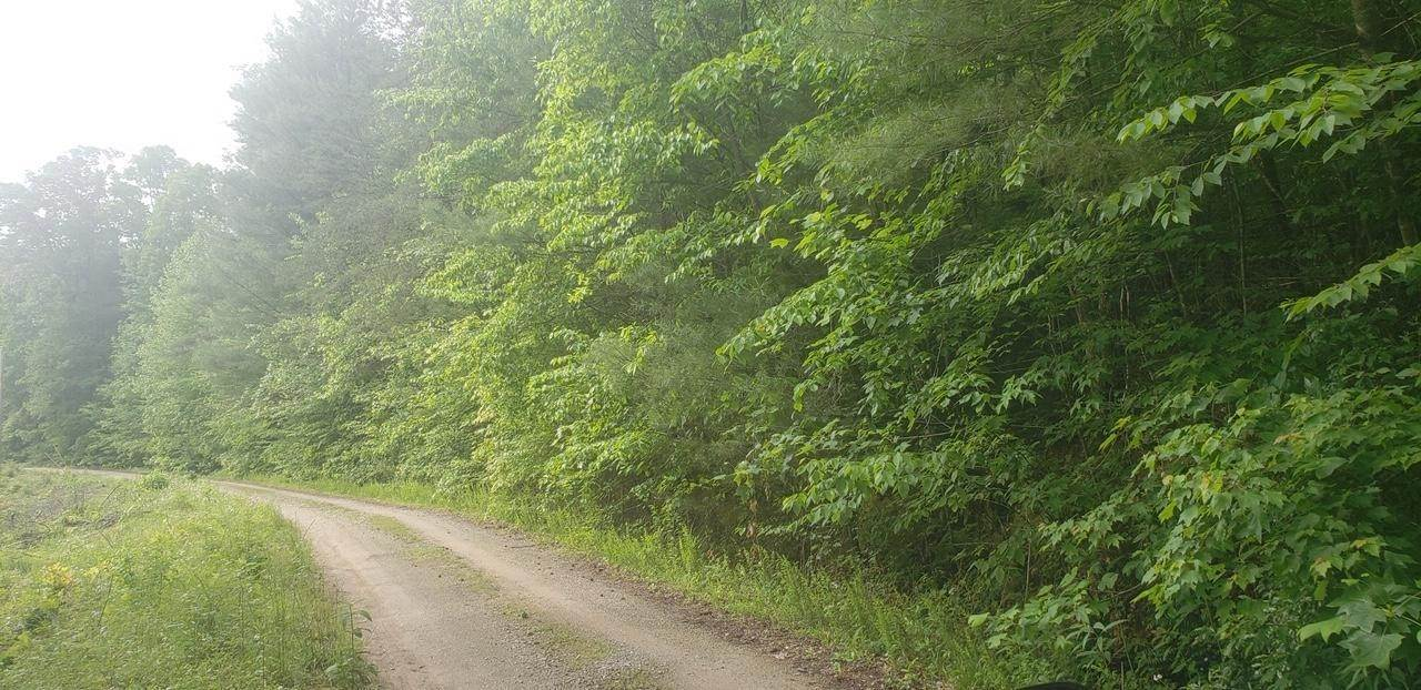 Land for Sale at Cedar Ridge Road Oliver Springs, Tennessee 37840 United States