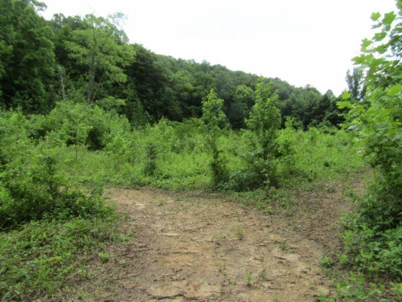 Land for Sale at 455 Shiloh Road Crawford, Tennessee 38554 United States