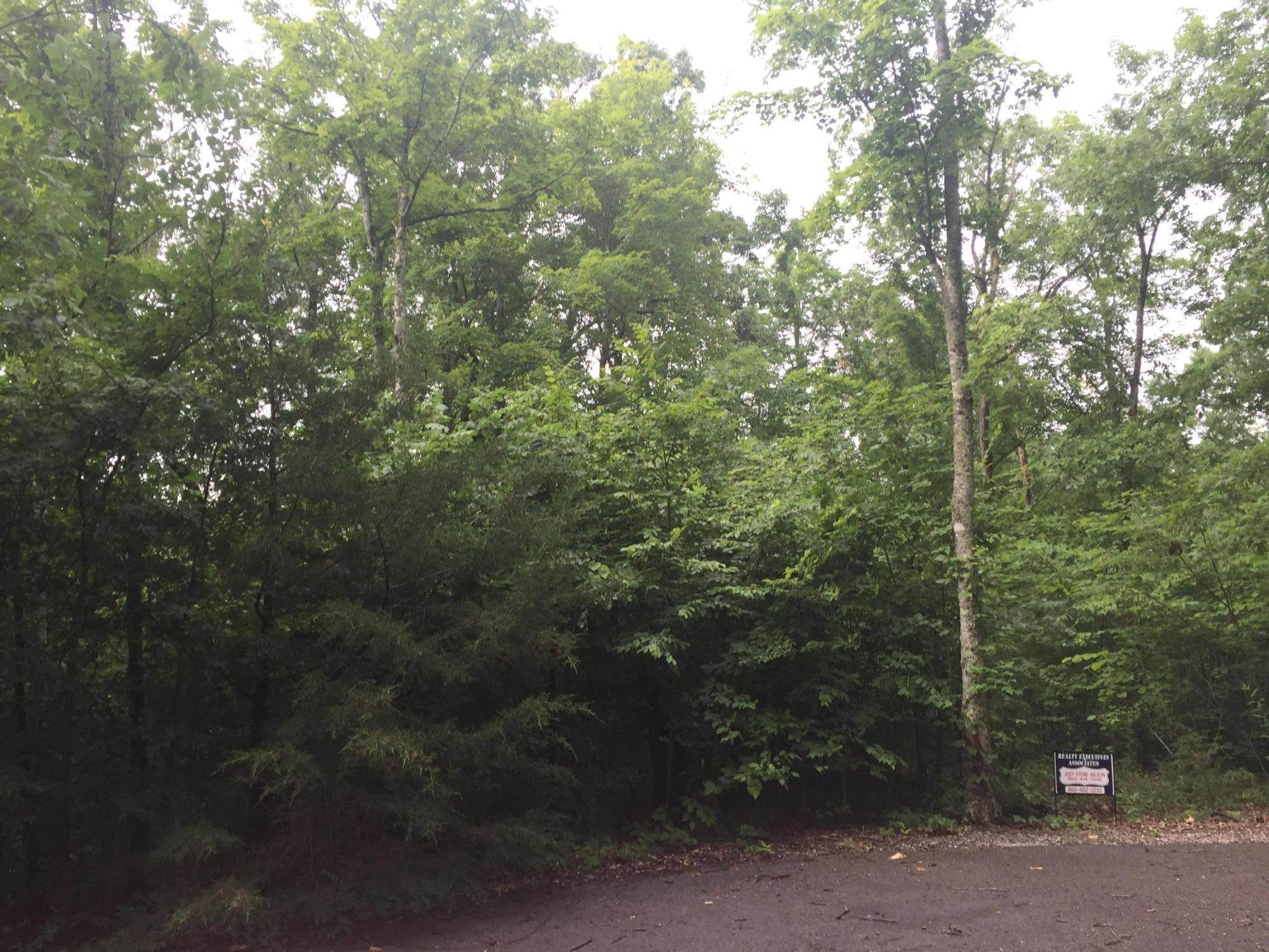 Land for Sale at Mitchell Creek Pointe Allons, Tennessee 38541 United States