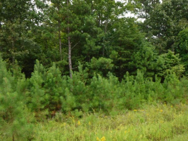 Land for Sale at 16.27ac Hanging Limb Hwy Crawford, Tennessee 38554 United States