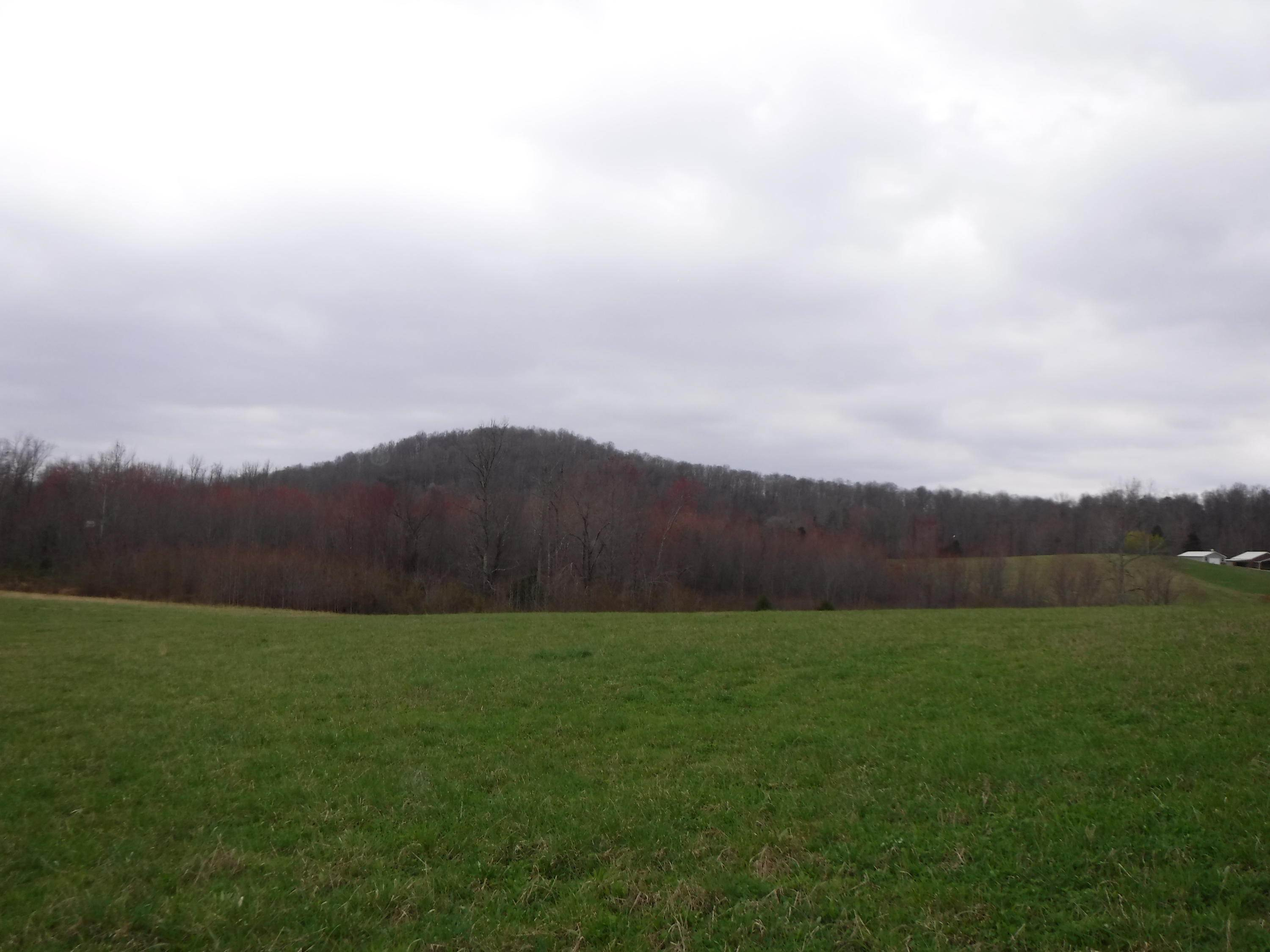 Land for Sale at 25.10 Summer Shade Road Allons, Tennessee 38541 United States