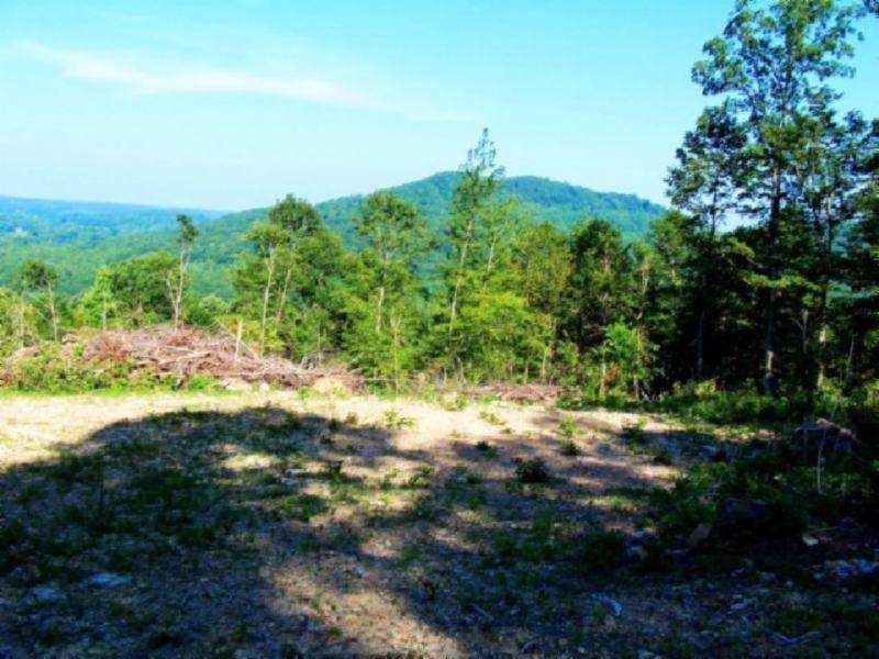 Land for Sale at 19.45ac Bear Hollow Road Livingston, Tennessee 38570 United States