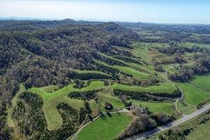 Land for Sale at S Highway 70 Rogersville, Tennessee 37857 United States