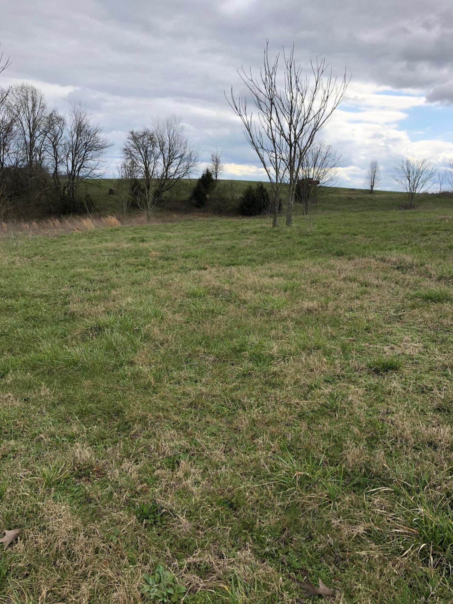 Land for Sale at Nances Ferry Road Blaine, Tennessee 37709 United States
