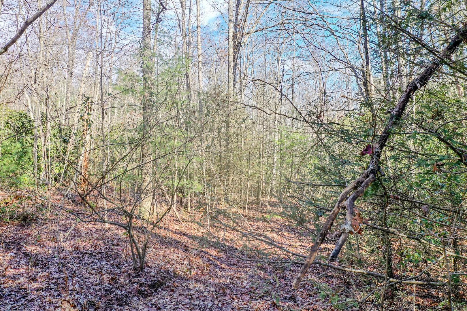 Land for Sale at Avens Lane Lot 9 Lane Tallassee, Tennessee 37878 United States
