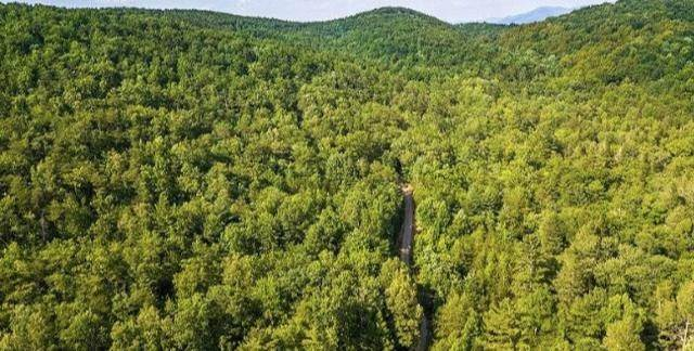 Land for Sale at Lot 2 Tellico Reliance Road Ocoee, Tennessee 37361 United States