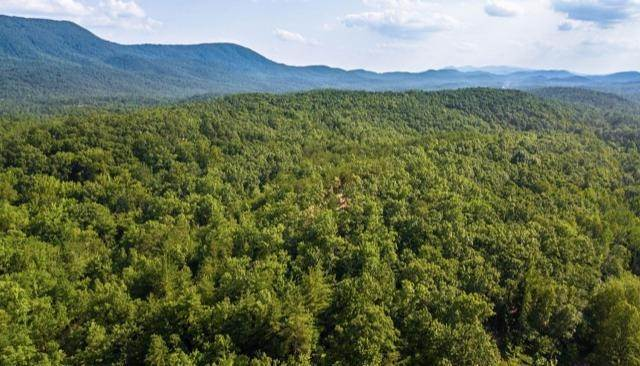 Land for Sale at Lot 3 Tellico Reliance Road Ocoee, Tennessee 37361 United States