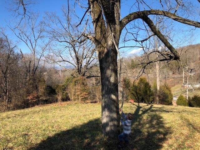 2. Land for Sale at shady view Road Kingsport, Tennessee 37660 United States