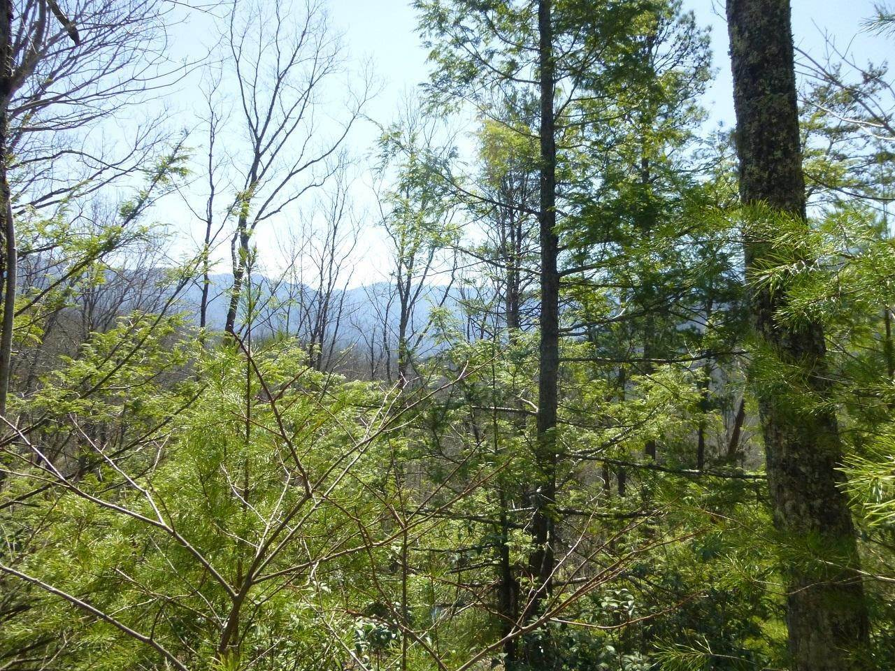 Land for Sale at Lot24 & 25 Sonshine Ridge Road Cosby, Tennessee 37722 United States