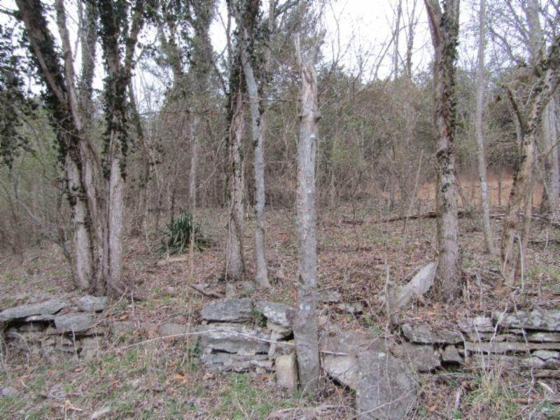 Land for Sale at Hartsville Pike Carthage, Tennessee 37030 United States