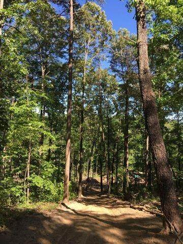 Land for Sale at US-127 Pikeville, Tennessee 37367 United States