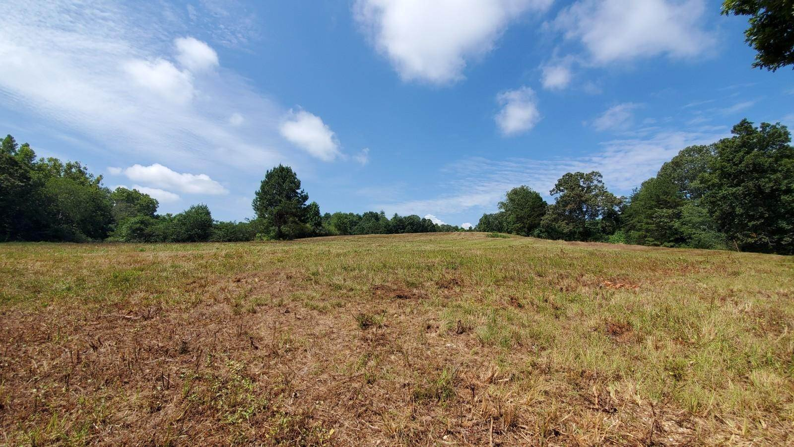 Land for Sale at Tract 5 Shahan Road Birchwood, Tennessee 37308 United States