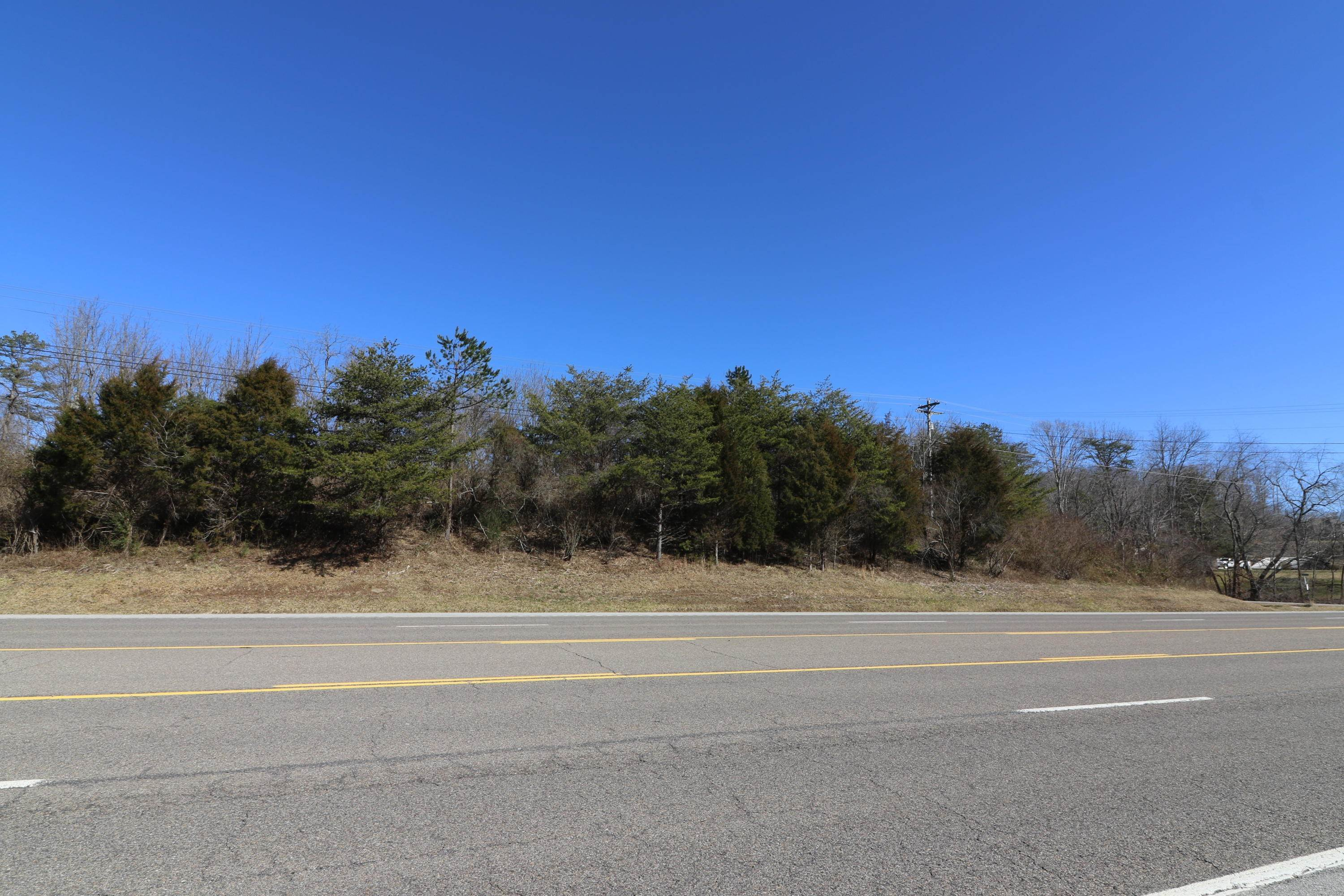 Land for Sale at Highway 27 Helenwood, Tennessee 37755 United States