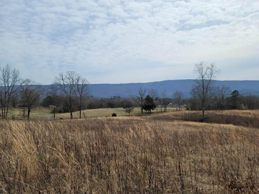 Land for Sale at 72.3 Acres County Road 804 Etowah, Tennessee 37331 United States