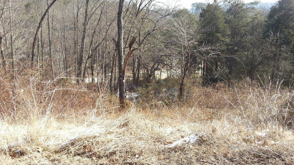 Land for Sale at Lot 60 Whispering Court Bean Station, Tennessee 37708 United States