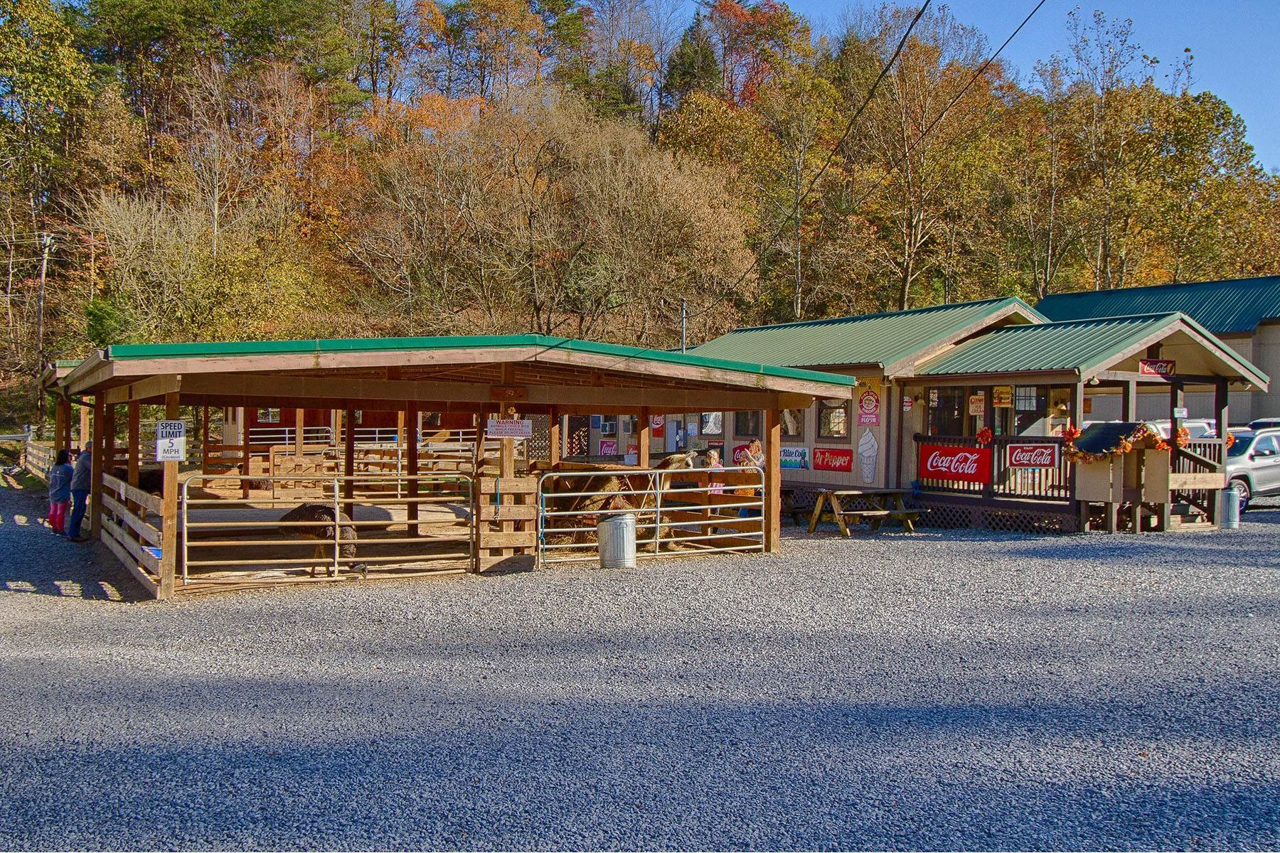 商用 为 销售 在 Big Rock Dude Ranch 909 Little Cove Road Pigeon Forge, 田纳西州 37863 美国