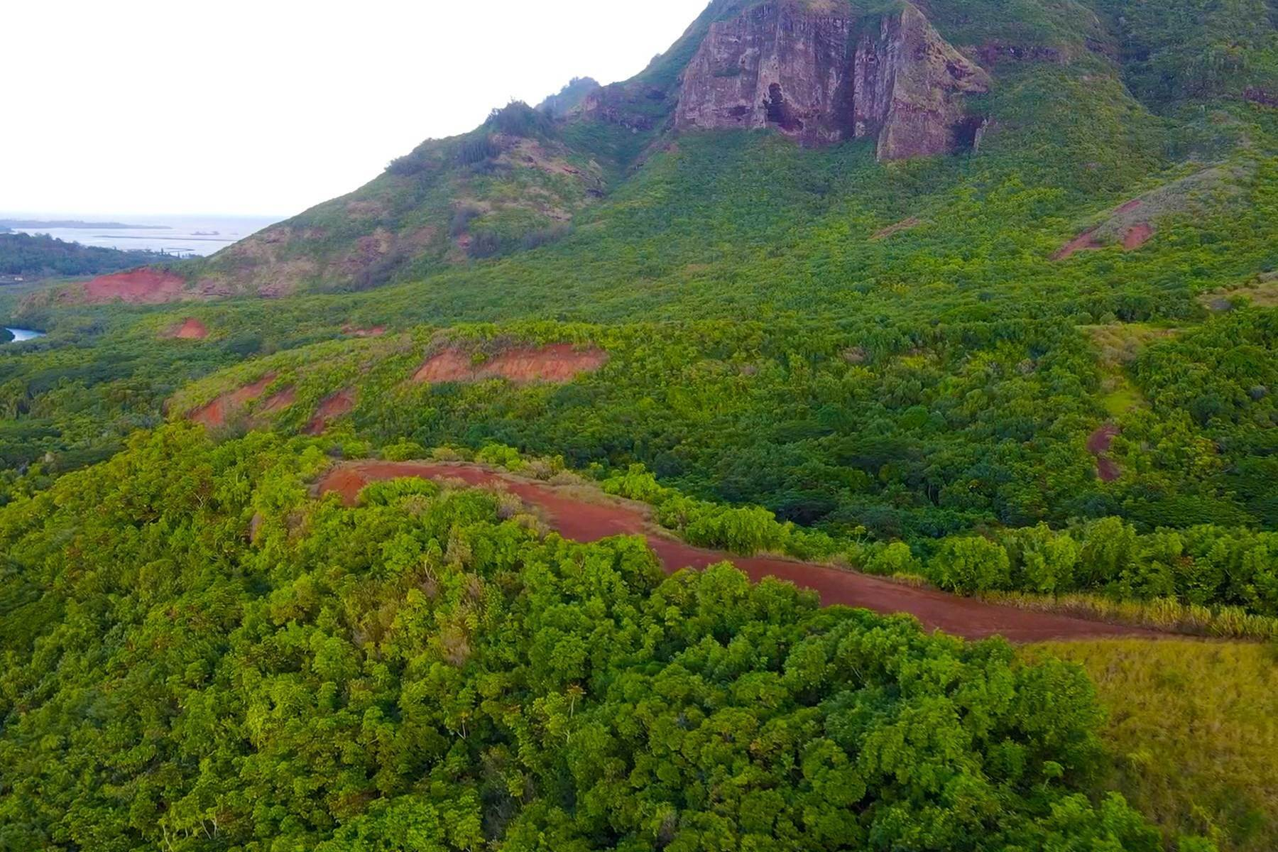 15. Land for Sale at NIUMALU Lihue, HI 96766 Niumalu Lihue, Hawaii 96766 United States